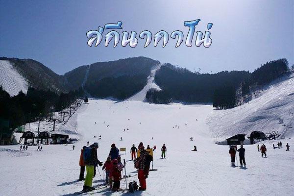 นากาโน่ เล่นสกี แช่ออนเซ็น